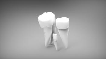 Estructura de los dientes